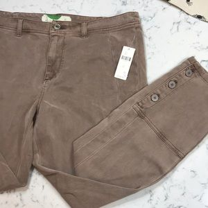 Anthropology Taupe pants   Size 31   NWT